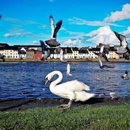 Kombinierte Schülersprachreise nach Galway und Dublin