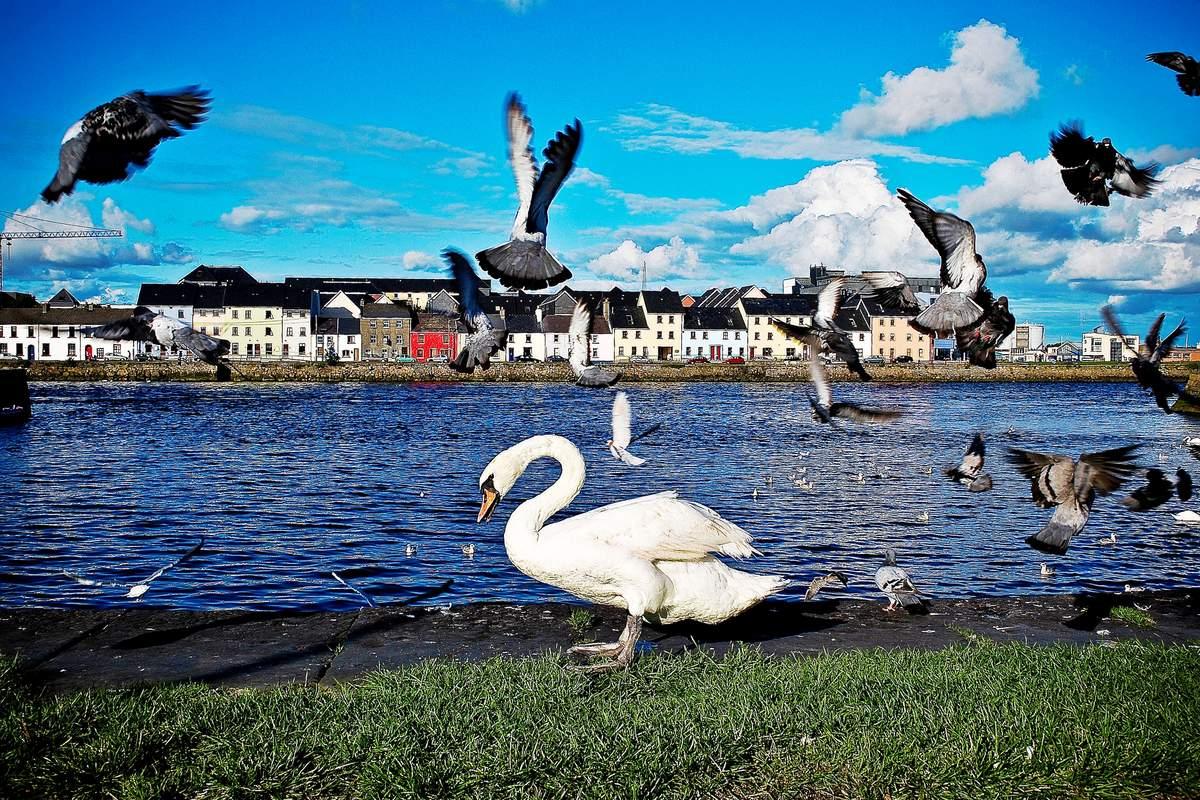 Englisch Familiensprachreise Galway Irland